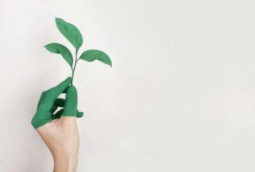 energiezuinige samenleving